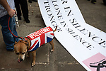 """© Joel Goodman - 07973 332324 . 02/06/2018. Manchester, UK. A DFLA supporter with a dog wearing a Union Jack """" FREETOMMY """" coat , in reference to jailed EDL founder Tommy Robinson . The Democratic Football Lads Alliance demonstrate in Manchester , eleven days after the first anniversary of the Manchester Arena terror attack . Photo credit : Joel Goodman"""
