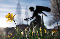 Daffodils with Chapel of Memories angel sculpture (photo by Megan Bean / © Mississippi State University)