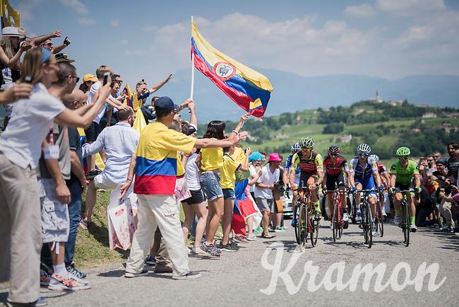 Filippo 'Pipo' Pozzato (ITA/Wilier Triestina-Selle Italia) leading the race leading group up the crazy steep Muro di Ca' del Poggio (max 18%)<br /> <br /> Stage 20: Pordenone › Asiago (190km)<br /> 100th Giro d'Italia 2017
