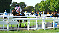 Winner of The AJN Steelstock Henstridge Apprentice Handicap Juanito Chico is led around in the Parade Ring during Horse Racing at Salisbury Racecourse on 9th August 2020
