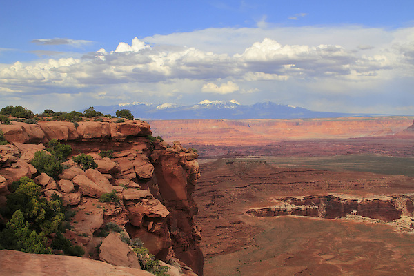 Monument Basin and La Sal Mountains from Grandview Point Overlook, Canyonlands National Park, Utah. .  John offers private photo tours in  Canyonlands National Park and throughout Utah and Colorado. Year-round.