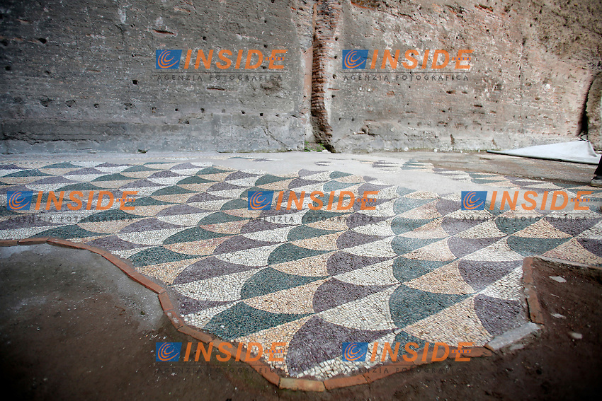 Roma 21-06-2016 Terme di Caracalla. Presentazione stampa del restauro del mosaico policromo della Palestra occidentale.<br /> Rome 21st June 2016. Press conference to present the restoration of a new policrhrome mosaic, into the Baths of Caracalla.<br /> Photo Samantha Zucchi Insidefoto