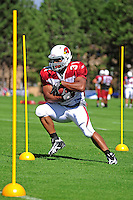 Aug. 1, 2009; Flagstaff, AZ, USA; Arizona Cardinals running back Jason Wright during training camp on the campus of Northern Arizona University. Mandatory Credit: Mark J. Rebilas-
