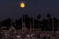 A sunset-orange wisp of cloud hangs over the Full Beaver Moon, November 13, 2016, the Super moon, as it floats over the boats moored at the San Leandro Marina on San Francisco Bay.