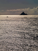The Skelligs Rocks off the Kerry coast in Southern Ireland..Picture by Don MacMonagle.©macmonagle.com