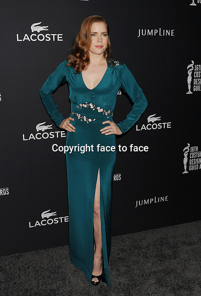 BEVERLY HILLS, CA- FEBRUARY 22: Actress Amy Adams arrives at the 16th Costume Designers Guild Awards at The Beverly Hilton Hotel on February 22, 2014 in Beverly Hills, California.<br /> Credit: Mayer/face to face<br /> - No Rights for USA, Canada and France -