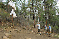 Photo story of Philmont Scout Ranch in Cimarron, New Mexico, taken during a Boy Scout Troop backpack trip in the summer of 2013. Photo is part of a comprehensive picture package which shows in-depth photography of a BSA Ventures crew on a trek. In this photo BSA Ventures crew members work together to  hang up a bear bag outside their campsite in the backcountry of the Philmont Scout Ranch.   <br /> <br /> The  Photo by travel photograph: PatrickschneiderPhoto.com