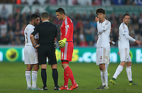 Swansea City goalkeeper Lukasz Fabianski complains to referee Kevin Friend after the goal scored by Laurent Koscielny of Arsenal to make it 0-2 during the Barclays Premier League match between Swansea City and Arsenal played at The Liberty Stadium, Swansea on October 31st 2015