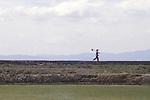 China, rice field in the Dali Bai Autonomous Prefecture, Yunnan Province