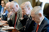 United States President Donald Trump flanked by  Secretary of State Rex Tillerson (L) and  Defense Secretary Jim Mattis (R) looks on as President Abdel Fattah Al Sisi of Egypt  speaks on the other side of the table  in the Cabinet Room of White House in Washington, DC, April 3, 2017.<br /> Credit: Olivier Douliery / Pool via CNP