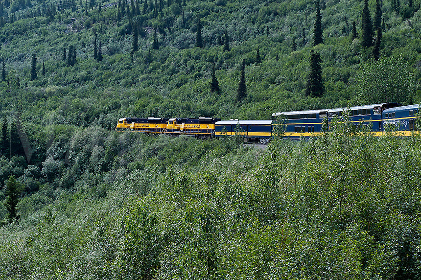 Tourist train winding it's way through the pristine Alaskan landscape, Alaska USA