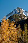 Mountain and trees in fall, Mineral King, Sequoia National Park, California
