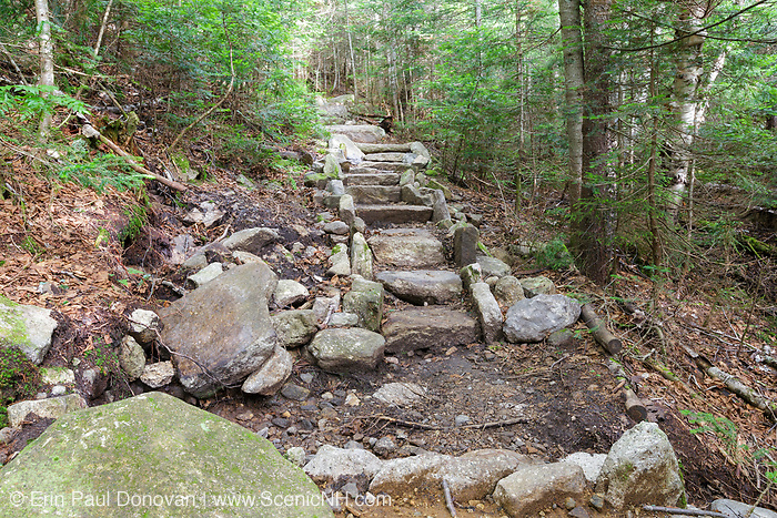 Stone staircase along the Mount Tecumseh Trail in Waterville Valley, New Hampshire USA during the summer months.