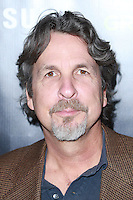 HOLLYWOOD, LOS ANGELES, CA, USA - NOVEMBER 07: Peter Farrelly arrives at HBO's 'Project Greenlight' Season 4 Winner Announcement held at Boulevard3 on November 7, 2014 in Hollywood, Los Angeles, California, United States. (Photo by David Acosta/Celebrity Monitor)