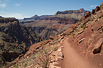 South Kaibab Trail descending the South Rim in Grand Canyon National Park, northern Arizona. .  John leads hiking and photo tours throughout Colorado. . John offers private photo tours in Grand Canyon National Park and throughout Arizona, Utah and Colorado. Year-round.