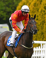 Many Dreams ridden by Jason Watson go down to the start of The Shadwell Stud Racing Excellence Apprentice Handicap (Div 2), during Afternoon Racing at Salisbury Racecourse on 18th May 2017