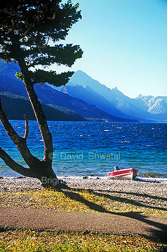 A speed boat and tree shadow on the pebble beach shore of Cameron Bay Upper Waterton Lake water sky and mountains Alberta Canada