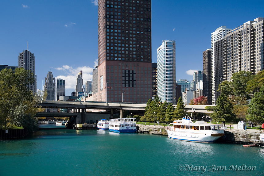 A view of the Chicago River