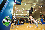 2014 W DII Volleyball