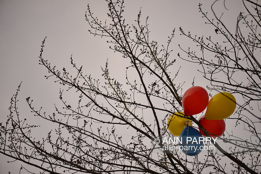 Balloons stuck in bare branches of tree at Heckscher Park, on November 8, 2014, at Huntington, Long Island, New York, USA