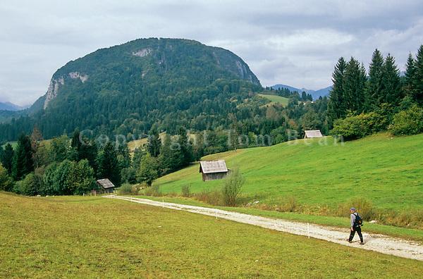 Hiker on rural road, with Rudnica Hill in distance, in the Julian Alps Region, near Bohinjska, Slovenia, AGPix_0558.
