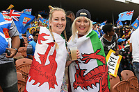 Wales fans, 2019 HSBC World Sevens Series Hamilton at FMG Stadium in Hamilton, New Zealand on Saturday, 26 January 2019. Photo: Kerry Marshall / lintottphoto.co.nz