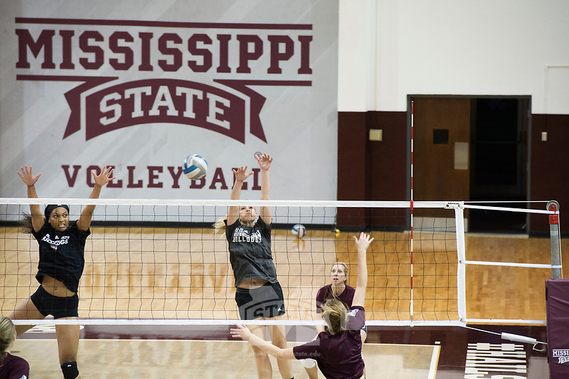 Volleyball alumni Game in Newell-Grissom Building.  Super Bulldog Weekend.<br />  (photo by Megan Bean / &copy; Mississippi State University)