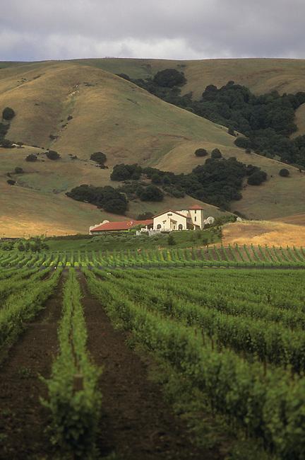 Gloria Ferrer Winery near Sonoma, Ca