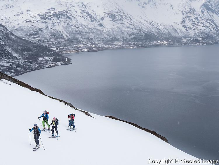 Skiløpere på vei opp mot Skalsatind på vei mot Øksfjordjøkelen. ---- Skiers accending Skalsatind in Kvænangen, Troms.