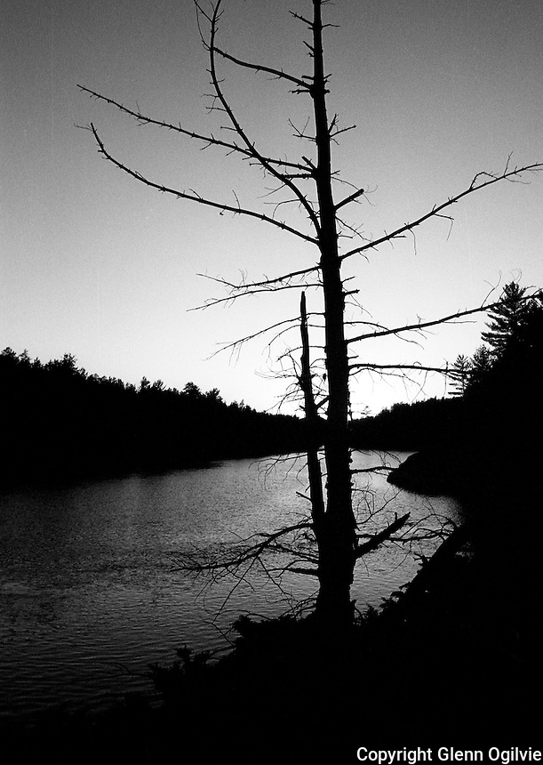 Canadian shield, French River, Ontario Fall, 2008.