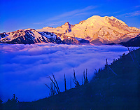 Mt. Rainier in fog, Mt. Rainier National Park, Washington    Sunrise viewpoint   Cascade Range