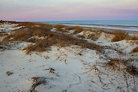 Sand dunes on the beach at Jekyll Island Georgia.