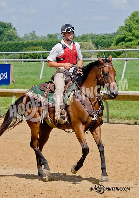 Picko's Pride winning The Hockessin Stakes at Delaware Park on 7/4/13