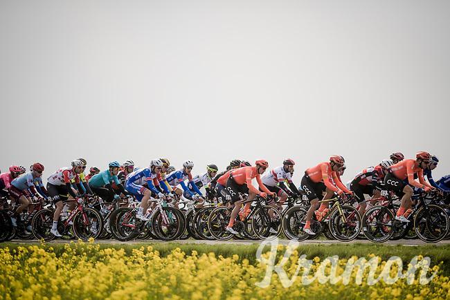 10km into the race<br /> <br /> 81st Gent-Wevelgem 'in Flanders Fields' 2019<br /> One day race (1.UWT) from Deinze to Wevelgem (BEL/251km)<br /> <br /> ©kramon