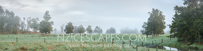 Moody scene of farmland in Whataroa with creek at dawn,  West Coast, South Westland, New Zealand, NZ