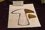 L&acirc;mina de machado semi-lunar no Museu de Antropologia do Vale do Para&iacute;ba, Jacare&iacute; - SP, 06/2016.<br /> Origem: S&iacute;tio Arqueol&oacute;gico Ligh - Jacare&iacute; - SP, Material/T&eacute;cnica: Cer&atilde;mica/Acordelamento, Cronologia: Sem data&ccedil;&atilde;o.
