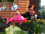 """March 15, 2017, Urayasu, Japan - Japan's travel agency H.I.S. president Hideo Sawada releases a Korean made fish robot Airo into the fish tank at the opening of his """"Henn na Hotel"""" (Strange hotel) near Tokyo Disney Resort in Urayasu, suburban Tokyo on Wednesday, March 15, 2017. Japan's travel agency H.I.S runs the Henn na Hotel which has only seven human employees while nine types 140 robot staffs work at the 100-room six-storey hotel.    (Photo by Yoshio Tsunoda/AFLO) LwX -ytd-"""