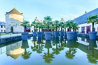 France, Loir-et-Cher (41), Cheverny, château de Cheverny, la cour de la ferme et palmiers de Chine