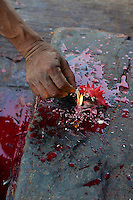 Offering a chicken at the small a small temple at Pashupati and cremation area Kathmandu, Nepal