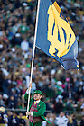 Oct 11, 2014; The Leprechaun carries the ND flag after an Irish TD. (Photo by Matt Cashore)