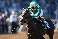 DEL MAR, CA - NOVEMBER 04: Bar of Gold #5, ridden by Irad Ortiz Jr., stays low while coming across the finish line during the Breeders' Cup Filly & Mare Sprint on Day 2 of the 2017 Breeders' Cup World Championships at Del Mar Thoroughbred Club on November 4, 2017 in Del Mar, California. (Photo by Alex Evers/Eclipse Sportswire/Breeders Cup)