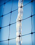 1.24.14 - Ice on a Wire...