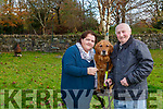 Christine and Paddy O'Sullivan Kenmare with their Golden Retriever Tasha who is a breeder for the Irish Guide Dogs Association
