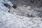 NEW ZEALAND, Franz Josef, Tourists climbing on Franz Josef Glacier, Ben M Thomas
