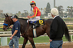 ARCADIA, CA  JANUARY 06: Trainer Bob Baffert talks to Mike Smith after #6 McKinzie wins the Sham Stakes (Grade lll) on January 6, 2018, at Santa Anita Park in Arcadia, CA. (Photo by Casey Phillips/ Eclipse Sportswire/ Getty Images)