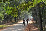Auroville Marathon 2015