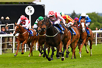 Winner of The Simon & Nerys Dutfield Memorial Novice Stakes,Youkan ridden by Martin Lane and trained by Stuart Kittowu during Afternoon Racing at Salisbury Racecourse on 18th May 2017