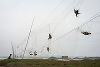 Dozens of dead shorebirds hang in a poachers mist nets in Guangdong Province, China. Hunters trap during migration but leave their nets up year-round indiscriminately killing many birds. Qiantangzhen, China. March.