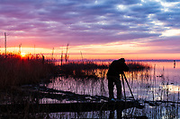 Photographing sunrise on Pungo Lake, Pocosin Lakes National Wildlife Refuge