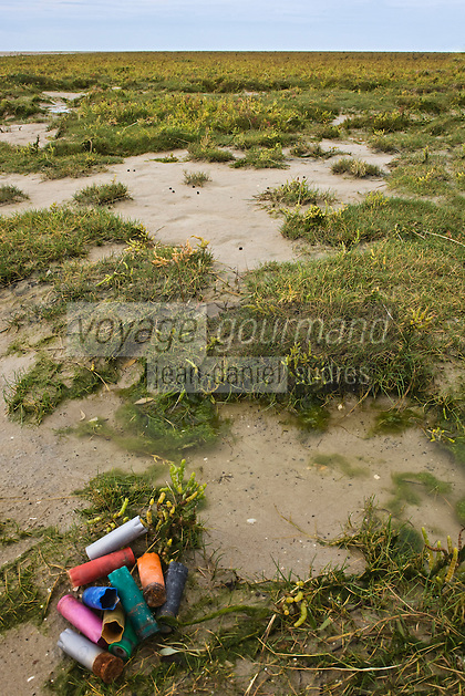 Europe/France/Picardie/80/Somme/Baie de Somme/Le Crotoy: Baie de Somme - cartouches